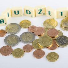 P. Mačiulis: premjeras turi aktyviai dalyvauti derinant biudžeto projektą Seime