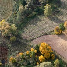 Bus galima įsigyti įsiterpusius valstybinės žemės sklypus, tačiau ne visus