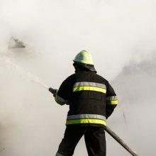 Telšių rajone per gaisrą žuvo vyras: įtariamas neatsargus rūkymas