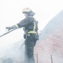 Šiaulių rajone užsiliepsnojo namas: ant kojų sukeltos ugniagesių gelbėtojų pajėgos