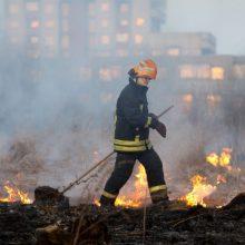 Kovo mėnesį jau kilo daugiau nei šimtas žolės gaisrų: ugniagesiai primena ir apie atsakomybę