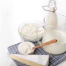 Augaliniai gėrimai naudingi, bet pieno produktų nepakeis