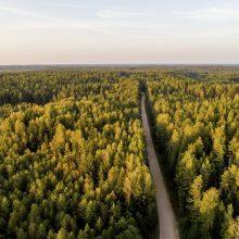 EK pozicija gali paskatinti naujas diskusijas dėl miško įsigijimo ribojimų Lietuvoje