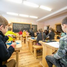 Specialistai apie mokyklų veiklos atnaujinimą: kaip tai paveiks COVID-19 plitimą?