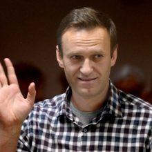 JT teisių ekspertės ragina atlikti tarptautinį tyrimą dėl A. Navalno apnuodijimo