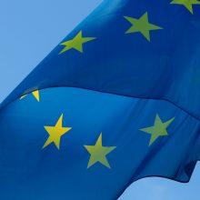 ES ir Kinija nepaisydamos nesutarimų aptars prekybos klausimus
