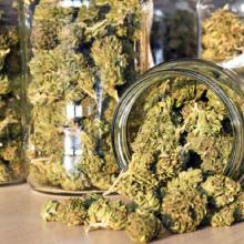 Marijampolės kriminalistų operacija: kratų metu aptiko kilogramą narkotikų