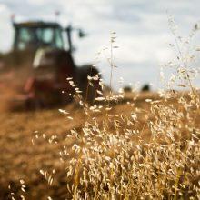 Lietuvoje siūloma uždrausti prieštaringai vertinamą herbicidą – glifosatą