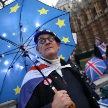 """Siūlo Didžiajai Britanijai mąstyti apie naują imigracijos planą po """"Brexit"""""""