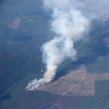 Rusijos meteorologas: miškų gaisrai šalies rytuose siejami su klimato kaita