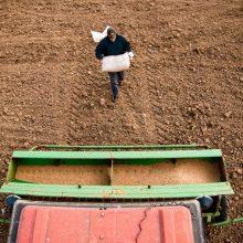 ŽŪM: ūkininkai ir toliau galės naudotis Lietuvos kaimo plėtros programos pagalba