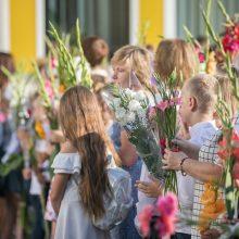 Į norimas Vilniaus mokyklas prašymus mokytis arba tęsti mokslą pateikė 13 tūkst. vaikų tėvų