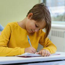 Kauno rajone jungiamos mokyklos, vyks ir kitokia švietimo tinklo pertvarka