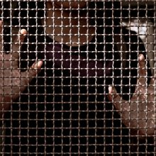 Danijoje daliai kalinių bus draudžiama užmegzti romantiškus santykius