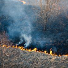 Dėl didelio gaisrų pavojaus ugniagesiai stiprina parengtį