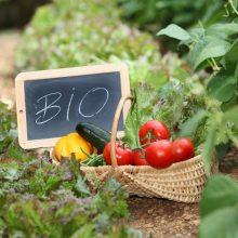 Ekologiškų prekių pardavimai Lietuvoje gerina rekordus