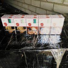 Už 16 tūkst. kontrabandinių cigarečių pakelių – iki 8 metų kalėjimo