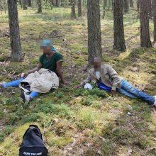 Migrantų krizė: per parą pasieniečiai sulaikė dar 118 nelegalų iš Baltarusijos
