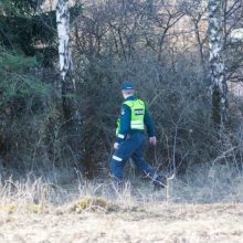 Kraupus nusikaltimas Vilniuje: iš mašinos išmetė lavoną, apkrovė šakomis ir padegė