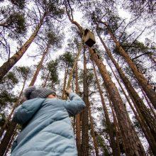 Aplinkos apsaugos komitete spręsis urėdijų reformos likimas
