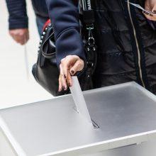 Per 2020 metų Seimo rinkimus užsienio lietuviai turės atskirą apygardą