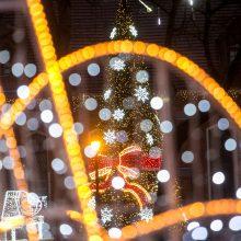 Pirmas žingsnis į šviesių Kalėdų laukimą žengtas: Kauno rajone sužibo eglutė!