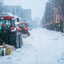 Anomalija ar tiesiog žiema? <span style=color:red;>(meteorologo įžvalgos)</span>