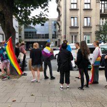 Tarp LGBT eisenos palaikytojų – ir olimpinė čempionė R. Meilutytė
