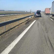 Stipri BMW ir vilkiko avarija magistralėje: yra nukentėjusių, vilkiko vairuotojas – neblaivus