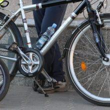 Sustabdytas girtas dviratininkas prisipažino: važiavo pirkti alaus