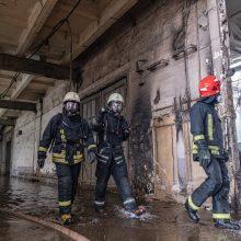 Alytaus gaisrą gesinusių pareigūnų organizme – padidėjęs sunkiųjų metalų kiekis