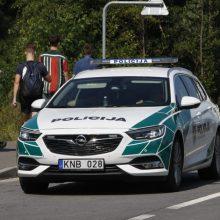 Kėdainių rajone policininkų automobilis partrenkė stirną