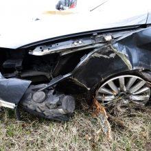 Tragiška nelaimė Šilutės rajone: žuvo į medį įsirėžusio automobilio vairuotojas