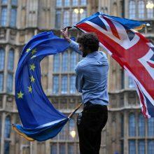 Be sutarties išstojusiai D. Britanijai gali pradėti trūkti vaistų ir maisto?