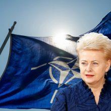 D. Grybauskaitės perspektyva NATO: reali ar tariama?