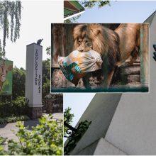 Direktorė: Zoologijos sodas – ne tik pramoga, bet ir edukacija