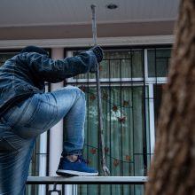 Lazdijų rajone darbavosi ilgapirščiai: pridarė nuostolių už 22 tūkst. eurų