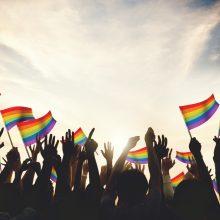 Internete – skatinimas vaikus meluoti, kad jie yra gėjai ar lesbietės