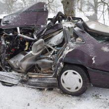 Alytaus rajone su vilkiku susidūrusio automobilio vairuotojas žuvo, moteris komoje