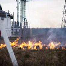 """Per parą šalyje kilo 30 žolės gaisrų: """"karščiausioji"""" zona – Vilniaus apskritis"""