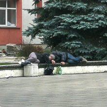 Neblaivi porelė nusprendė: miegui suolelis prie poliklinikos – ideali vieta