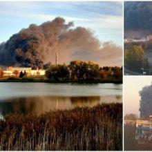 Didžiulis gaisras Alytuje: naktį užsiliepsnojusi gamykla dega iki šiol (papildyta)
