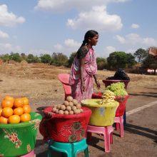 Nuo obuolių iki migdolų – Indija padidino muitus iš JAV importuojamoms prekėms