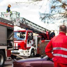 """Panevėžio raj. nuo žolės gaisro užsidegė bendrovė """"Alksnio dūmas"""", evakuoti žmonės"""