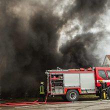 Garliavos penkiaaukštyje kilo gaisras: teko evakuoti dešimtis žmonių, žuvo gyvūnai