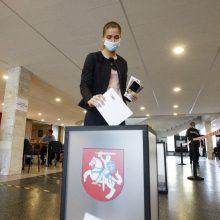 Ko reikėjo pergalei Seimo rinkimuose?