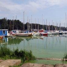Savivaldybė ruošiasi tvarkyti Kauno marių įlanką, o buriuotojai jaučiasi vejami lauk