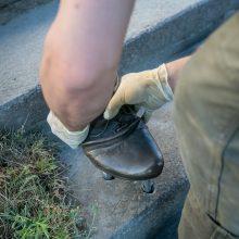 Kauniečių akį traukia palaimintojo batai