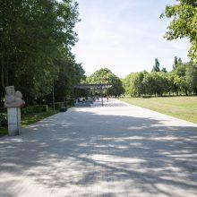 Kodėl atnaujintame parke džiūsta medžiai?