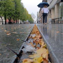 Ar Lietuva turės naudos iš klimato atšilimo?